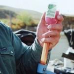 preparing a livestock vaccine