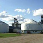 Gavilon Grain has sold its facility at Grand Forks, N.D. to Viterra. (Gavilon.com)