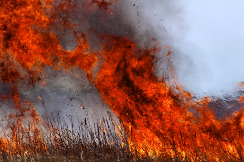 Four ways to help protect your farm from fire