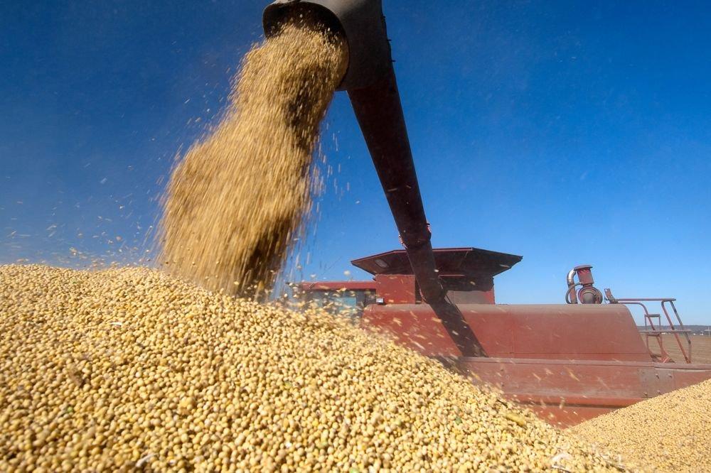 (Photo courtesy United Soybean Board)