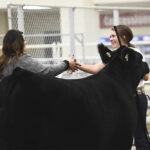 Fostering a new generation of U.S. beef producers