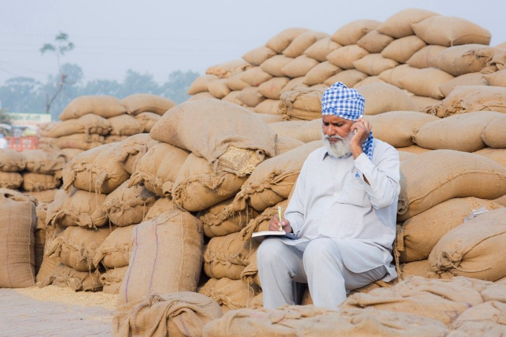 File photo of rye at a grain market in India. (Deepak Sethi/E+/Getty Images)