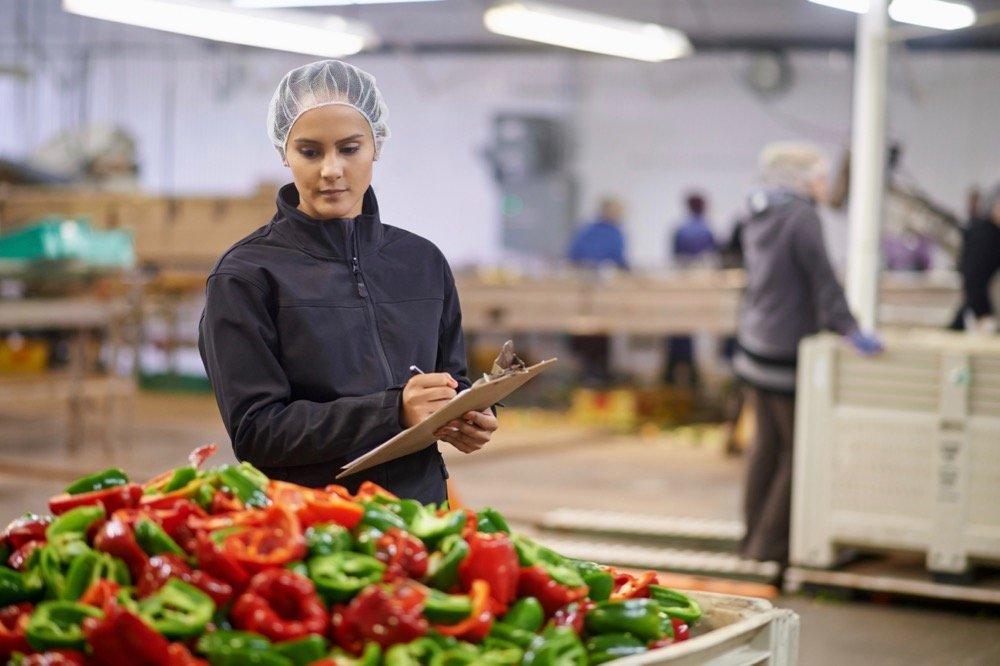 File photo of a quality control check on fresh peppers in a Canadian vegetable packing plant. (Jeffbergen/E+Getty Images)