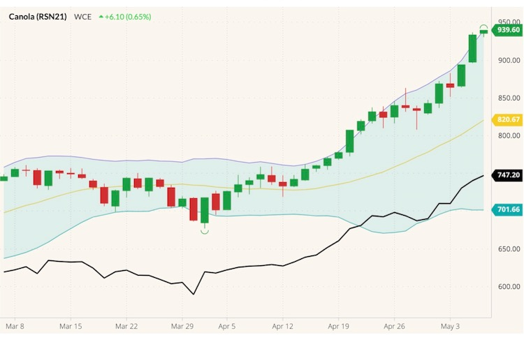 ICE July 2021 canola (candlesticks) with Bollinger (20,2) bands and November 2021 canola (black line). (Barchart)